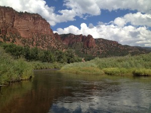 This is Colorado mountain country. A waist-deep water view from the Frying Pan River in Basalt, CO.